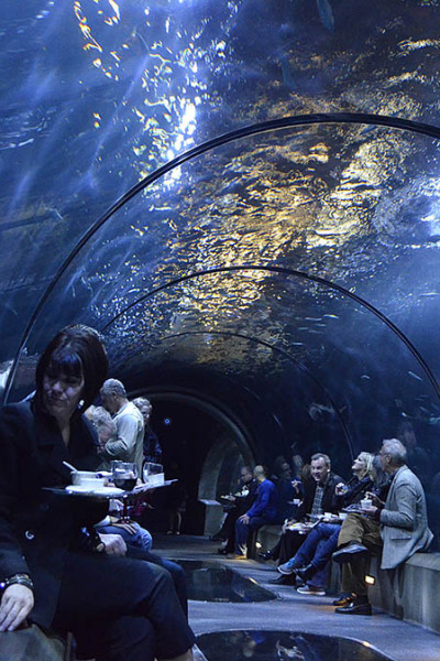 Enjoy the view while you eat in Passages of the Deepsm