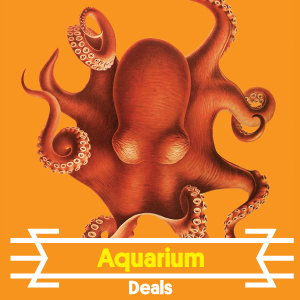AquariumDeals